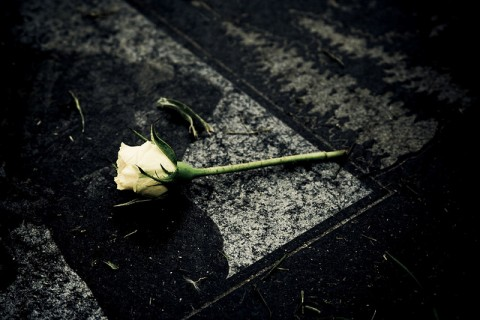 posso scrivere blog sulla siria chiuso per lutto